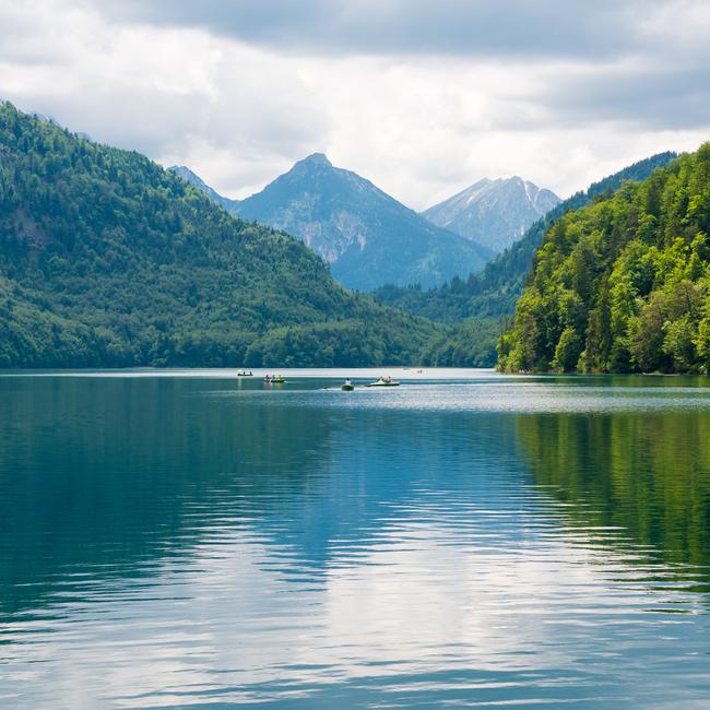 Starennest Alpsee Ausflug